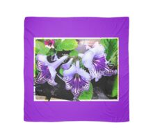 Blue and Purple Streptocarpus Scarf