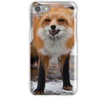 Goofy Fox iPhone Case/Skin