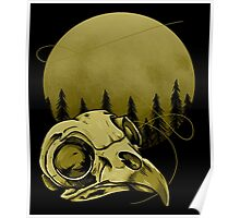 Barred Owl and Moon Poster