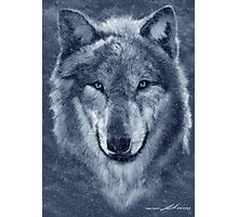 Wolf Spirit  Photographic Print