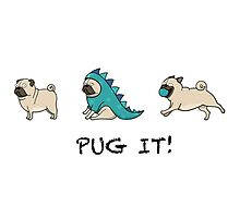 "PUG PUGS ""PUG IT""  Photographic Print"