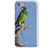 Australian Ringneck iPhone Case/Skin