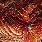 Prehistoric Bird by mindprintz