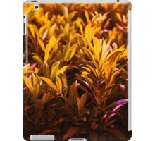 Orange Shades  iPad Case/Skin