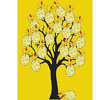 A Pineapple Tree Photographic Print