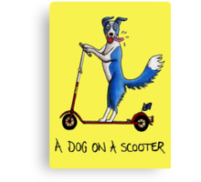 A Dog on a Scooter Canvas Print