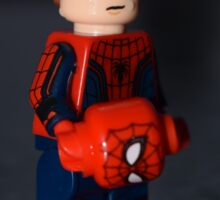 LEGO Arachnid Boy Sticker