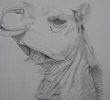 Smug Camel by Lvanderwykart