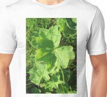 Natur, plant leaves, green, raindropps Unisex T-Shirt