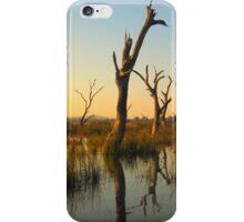 Sculptures in the Swamp iPhone Case/Skin