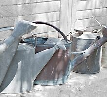 A Gardener's Watering Cans by Sherry Hallemeier