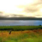 Storm clouds over wheat Fields by Chris Chalk