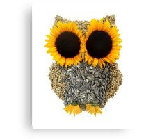 Hoot! Day Owl! Canvas Print