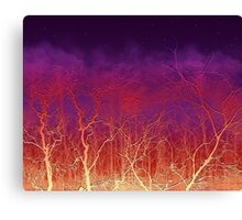 Sunset Trees  Canvas Print