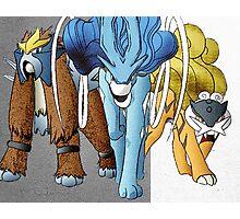 Shiny Legendary Beasts - Manga Edit Photographic Print