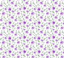 Chicory seamless pattern on white background by Kotkoa