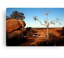 Wave Rock Western Australia Canvas Print