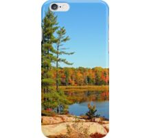 Cranberry Bog Trail Killarney Provincial Park iPhone Case/Skin