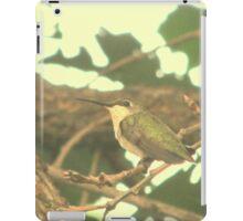 Sitting in a Tree iPad Case/Skin