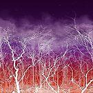 Sunset White Trees by 86248Diamond