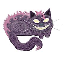 A Cheshire Cat Always Grins Photographic Print