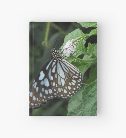 Butterfly on a White Flower Hardcover Journal