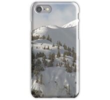 Snow and trees iPhone Case/Skin