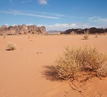 Desert of Wadi Rum by PhotoBilbo