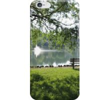 Park scene  iPhone Case/Skin