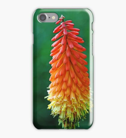 The Flame iPhone Case/Skin
