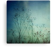 Ethereal Moment Metal Print