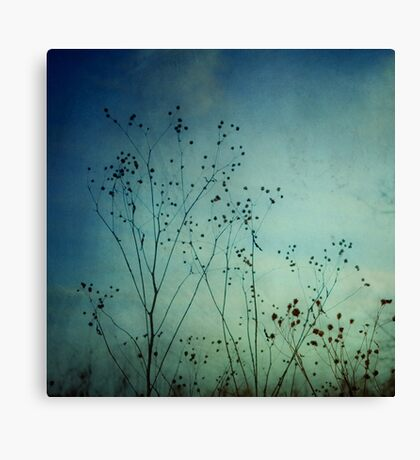 Ethereal Moment Canvas Print