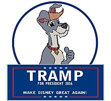 Tramp for President Photographic Print