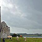 Clonmacnoise - Ireland by Arie Koene