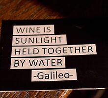 Wine & Galileo by egranitz