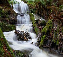 Myrtle Valley Falls - Mt Wellington -Tasmania by Anthony Davey