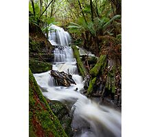 Myrtle Valley Falls - Mt Wellington -Tasmania Photographic Print