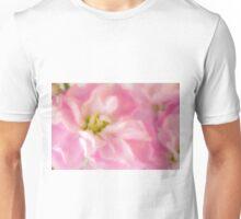 Pink Stock Matthiola Incana Macro  Unisex T-Shirt