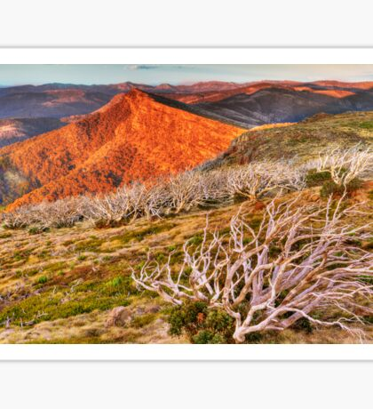Last light over the high country. Sticker
