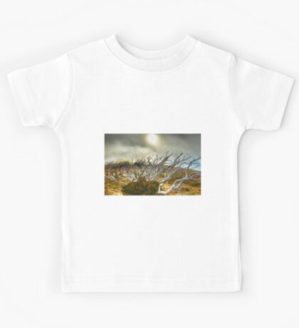 Burnt snowgum and regrowth Kids Tee