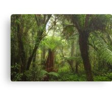 Rain Forrest Fantasy - Mount Wilson, NSW Australia - The HDR Experience Canvas Print
