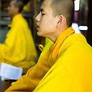 Buddhist Monk Hue Vietnam by Andrew  Makowiecki