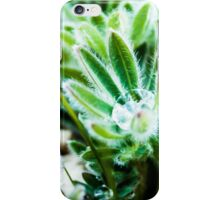 Water Drop on Lupin Leaves iPhone Case/Skin