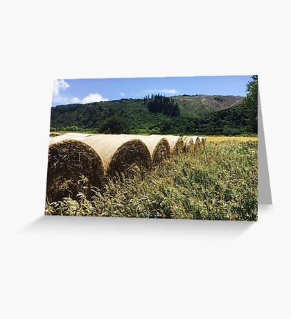 Round Hay Bales Greeting Card