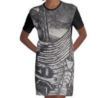 'Ship of fools', a lithograph print  Graphic T-Shirt Dress