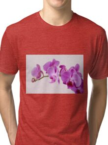 Purple Orchid on white background Tri-blend T-Shirt
