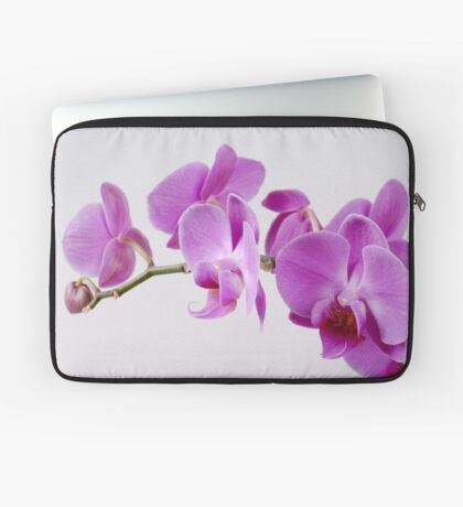 Purple Orchid on white background Laptop Sleeve