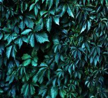 Green garden Sticker