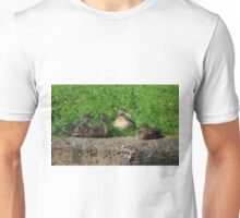 Mother and ducklings Unisex T-Shirt