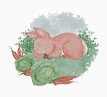 Hare and harvest Baby Tee